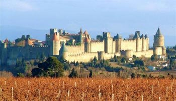 medieval castle in french countryside - carcassonne vignes
